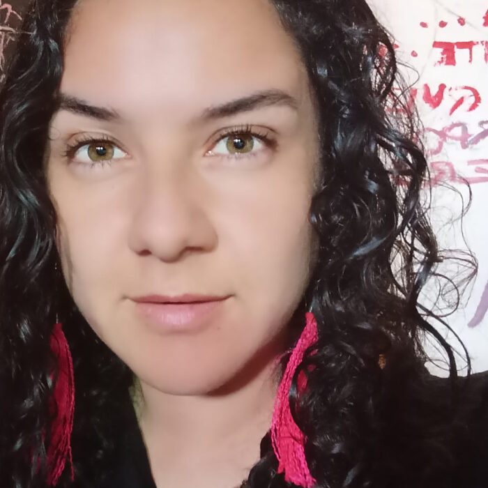 Janett Campos, Investigadora Etnográfica y Diseñadora de Territorios Inteligentes  (Chile)